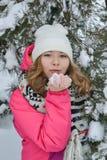 De winterportret in bont-bomen Stock Afbeelding