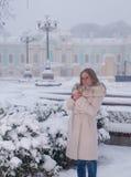 De winterportret van een vrouw in witte laag tijdens sneeuwval in een park Stock Foto