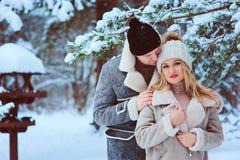 de winterportret van gelukkig romantisch paar die van hun gang in sneeuwbos of park genieten stock foto's