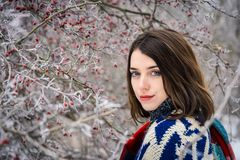 De winterportret van het charmeren van meisje Stock Foto