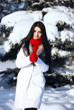 De winterportret van jonge mooie donkerbruine vrouw openlucht Royalty-vrije Stock Afbeelding