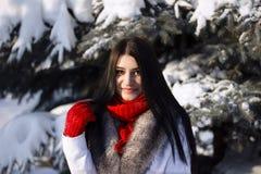 De winterportret van jonge mooie donkerbruine vrouw openlucht Stock Afbeelding