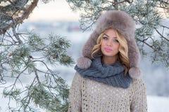De winterportret van mooie glimlachende vrouw met sneeuwvlokken in wit bont stock foto
