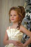 de winterprinses bij de Kerstboom Stock Afbeeldingen
