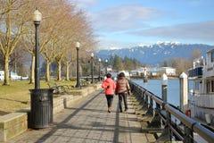De Winterpromenade van Vancouver Stock Foto's
