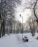 De winterpromenade voor het lopen met een bank en een lantaarn Stock Foto