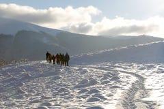 De winterreis stock fotografie