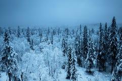 De winterreis door auto Stock Foto's