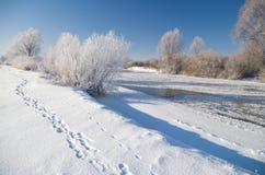De winterrivier Stock Afbeelding