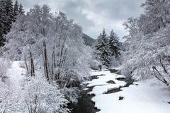 De winterrivier Stock Fotografie
