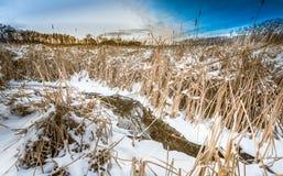 De winterrust Stock Fotografie
