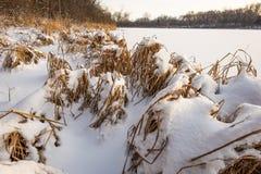 De winterrust Royalty-vrije Stock Afbeelding