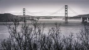De winters lopen Landbeëindigen San Francisco stock afbeelding