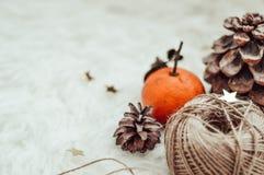 De wintersamenstelling met streng en kegels royalty-vrije stock foto's