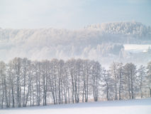 De winterscène Stock Foto's