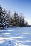 De winterscène Stock Foto