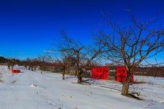 De winterscène in appelboomgaard in Hudson Valley-NY Royalty-vrije Stock Foto's