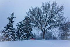 De winterscène in Canada Stock Afbeeldingen