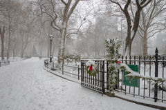 De winterscène in Madison Square Park, Manhattan, NYC Stock Afbeelding