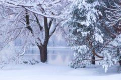 De winterscène op een meer Royalty-vrije Stock Fotografie