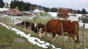 De winterscène van bergvilage Stock Foto