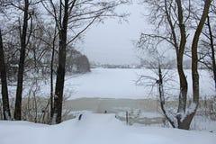 De winterscène van bevroren die vijver en bomen in sneeuw wordt behandeld stock afbeelding