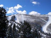 De winterscène van de skilift Stock Fotografie