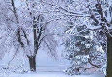 De winterscène van een boei op een meer Stock Afbeeldingen