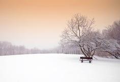 De winterscène van Nice Stock Fotografie