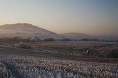 De winterschepselen op de achtergrond van KarlÅ ¡ tejn stock fotografie