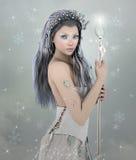 De winterschoonheid Royalty-vrije Stock Afbeelding
