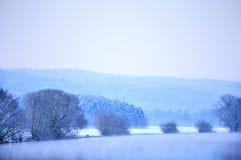 De winterscène bij een rivier Stock Afbeeldingen