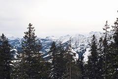 De winterse bergen van Alpen boven boomlijn stock foto's