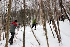 De winterski Stock Foto