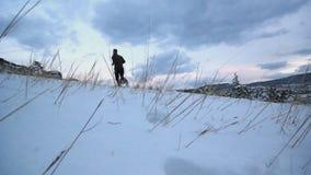 De wintersleep het lopen stock footage