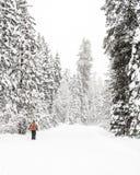 De wintersneeuw die op een dwars meer skiier land vallen stock foto
