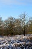 De wintersneeuw in landelijk Engeland Royalty-vrije Stock Fotografie
