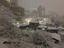 De wintersneeuw van Tokyo Stock Foto