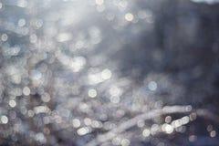 de de wintersneeuw vertroebelde achtergrond in stadspark, sneeuwval in bos, boomtakken en struiken met sneeuw worden behandeld di stock afbeeldingen