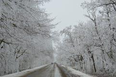 De winterspoor stock foto