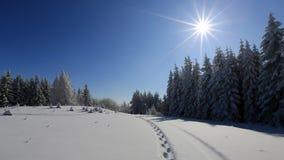 De winterspoor het bevroren landschap - Boheems Forest Sumava Tsjechische Republiek stock afbeeldingen