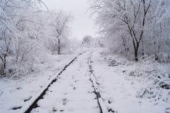 De wintersprookje in Rusland Royalty-vrije Stock Afbeeldingen