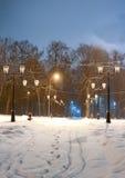 De wintersprookje in werkelijkheid Royalty-vrije Stock Fotografie