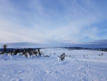 De wintersprookjesland aardige hemel met dunne wolken Stock Afbeelding