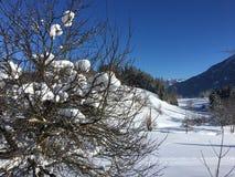 De wintersprookjesland in Goldegg, Oostenrijk Stock Fotografie