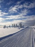 De wintersprookjesland in hedmark Noorwegen royalty-vrije stock afbeeldingen