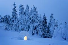 De wintersprookjesland in het sneeuwbos stock fotografie
