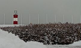 De wintersprookjesland op Plymouth-Schoffel stock foto's