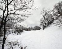De wintersprookjesland, Sneeuwsleep Royalty-vrije Stock Foto
