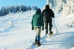 De winterssport Royalty-vrije Stock Afbeeldingen